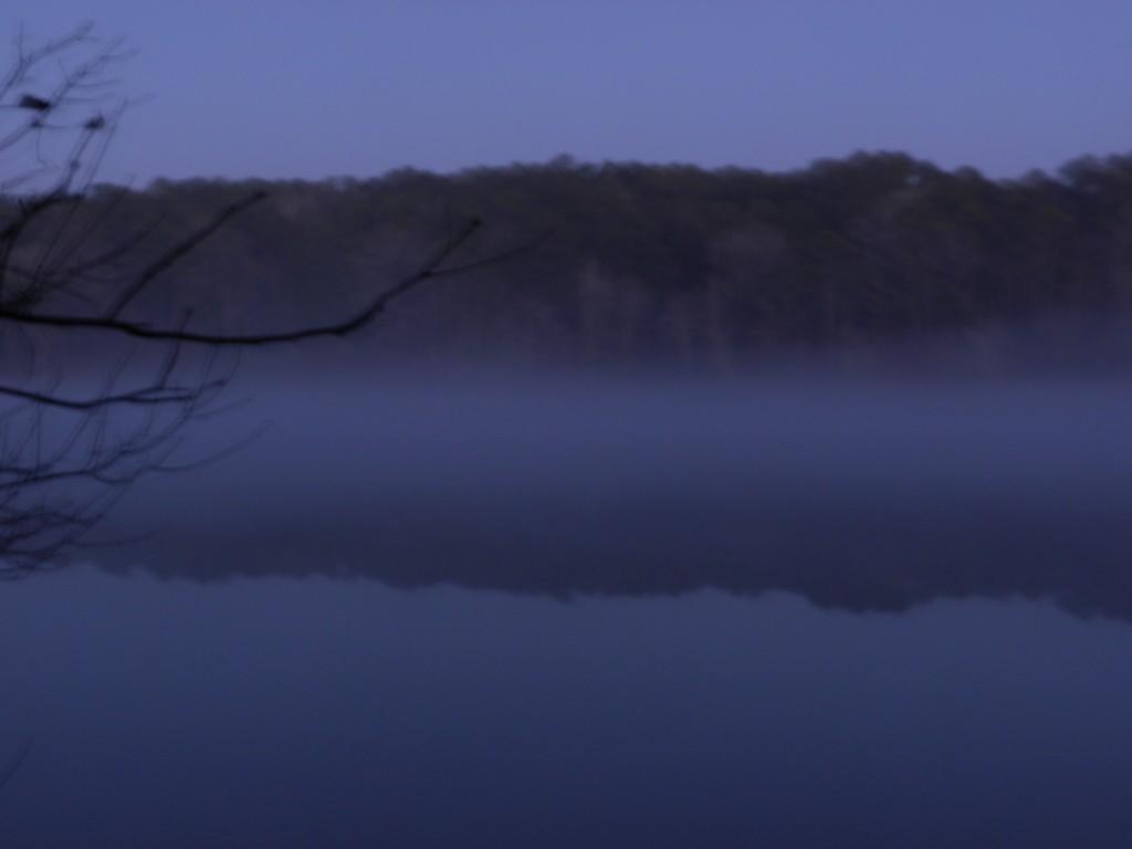 payne lake fog jan 10 02