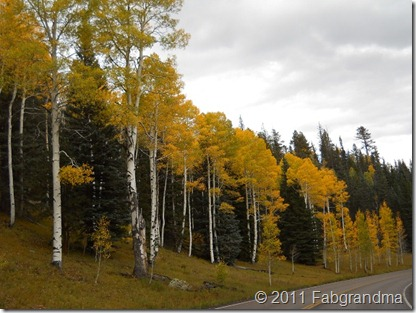 fall 2011 north rim 10