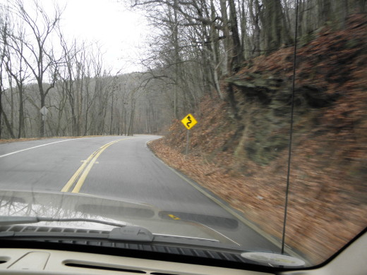 "NOW they tell us! See that ""Winding Road"" sign?"