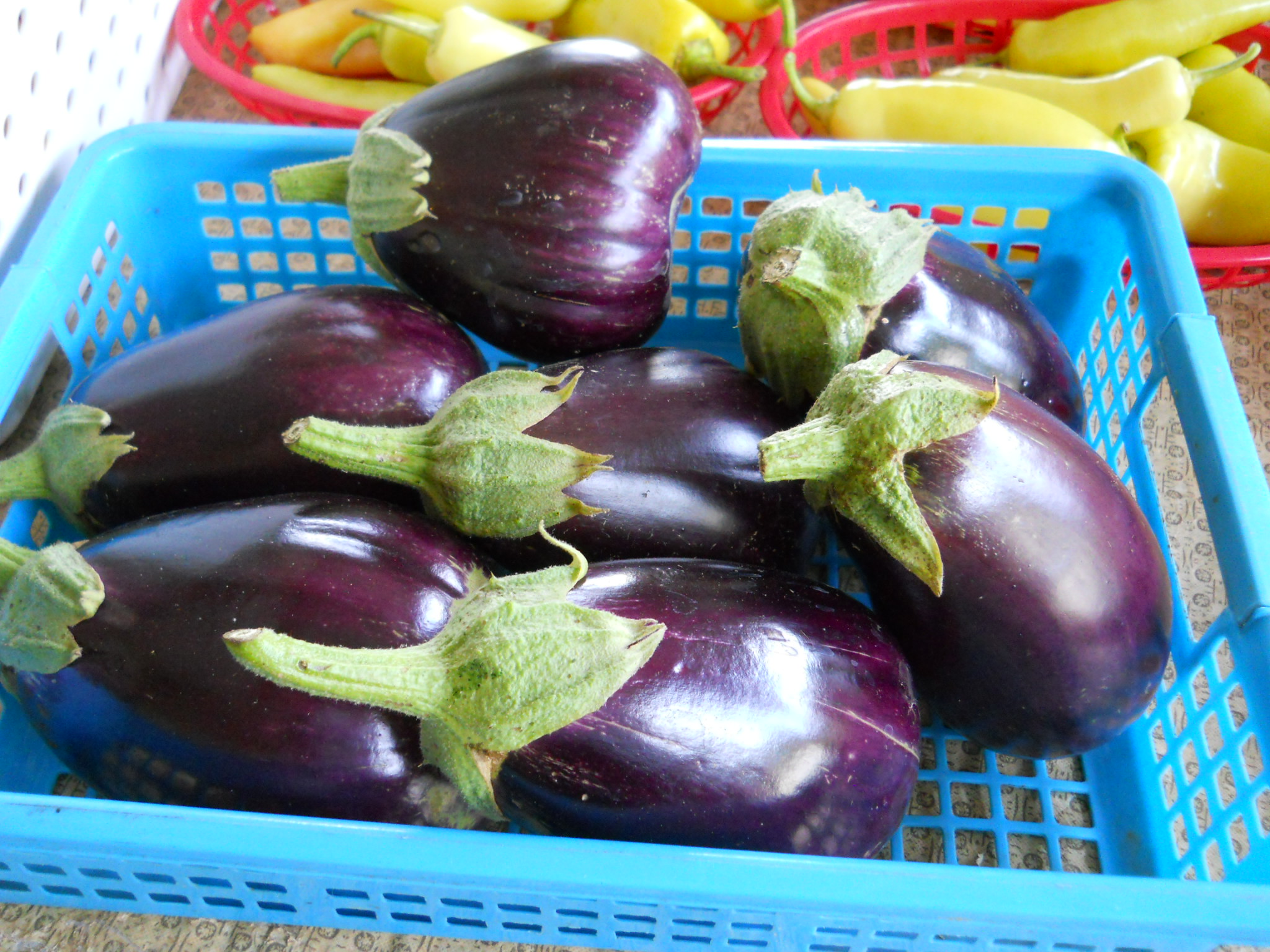 how to make eggplant less bitter