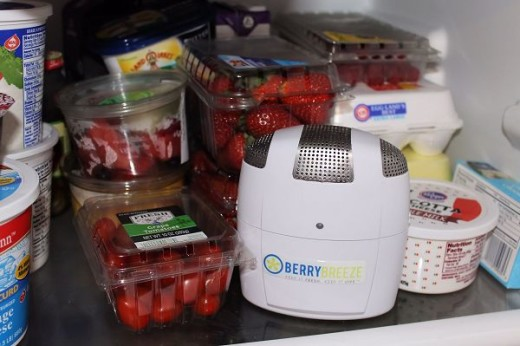 The Berry Breeze in my refrigerator.