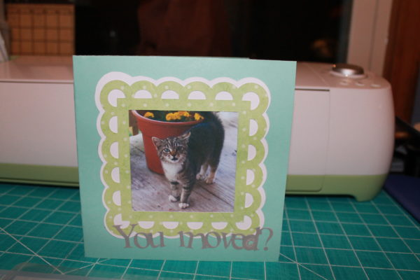 Here is the finished card on the outside. Cute!