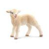 A cute baby lamb.