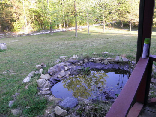 The old pond was not even pretty! It needed a lot of work done to make it look good.