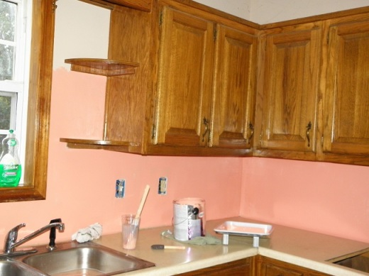 We used Glidden Latex Enamel in Coral Serenade. Primer was mixed in with the paint at the store.