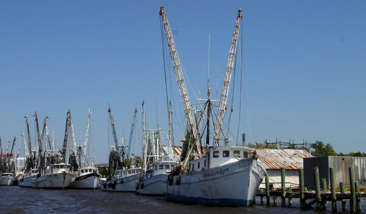 Shrimp Fleet, courtesy of Amelia Island