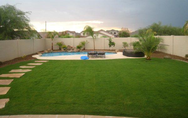 choosing grass or your yard