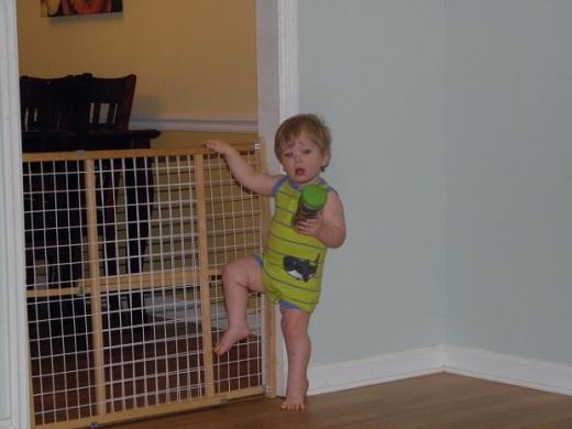 My grandson, Parker