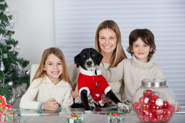 keep your pet safe over the holidays